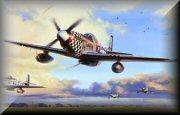 USAF Fighter Aircraft Aviation Prints