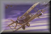 Bristol F2B Aviation Prints
