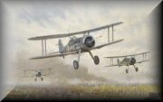 Gloster Gladiator Aircraft Art Prints