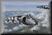 Harrier Aviation Art Prints