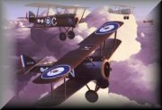 Sopwith Camel Aircraft Art