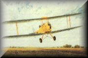 Tiger Moth Aircraft Prints